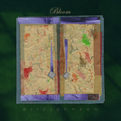 Eric Johnson: Bloom