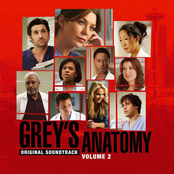 Grey's Anatomy Volume 2 Original Soundtrack