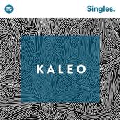 Kaleo: Spotify Singles