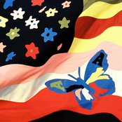Album cover of Wildflower, by The Avalanches