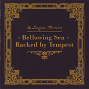 Bellowing Sea - Racked By Tempest