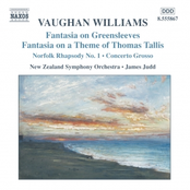 Vaughan Williams: VAUGHAN WILLIAMS: Fantasias / Norfolk Rhapsody / In the Fen Country / Concerto Grosso