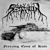 Freezing Eyes of Hate