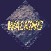 Walking - Single