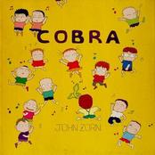 Cobra: Studio Version