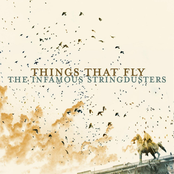 The Infamous Stringdusters: Things That Fly