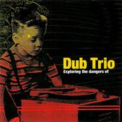 Dub Trio: Exploring The Dangers Of