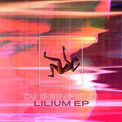 DJ Seinfeld: Lilium EP