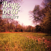 Boy And Bear: Moonfire