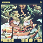 Y La Bamba: Court The Storm