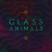 Glass Animals - EP