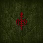 Wardruna: Yggdrasil