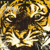 Eye of the Tiger (Remastered)