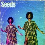 Georgia Anne Muldrow - Seeds Artwork