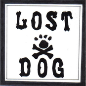 Lost Dog Street Band: Sick Pup