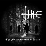 The Forest Dreams Of Black