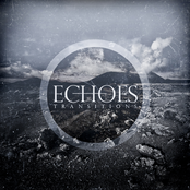 Echoes: Transitions