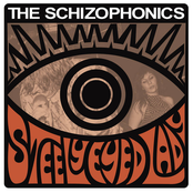 The Schizophonics: Steely Eyed Lady