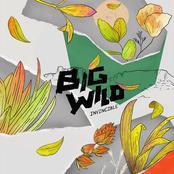 Big Wild: Invincible EP