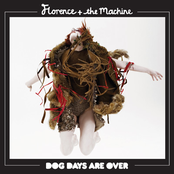 Dog Days Are Over - Single