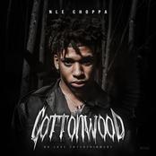 NLE Choppa: Cottonwood