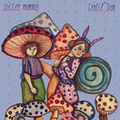 Soccer Mommy & Friends Singles Series, Vol. 3: Gentle Dom - Single