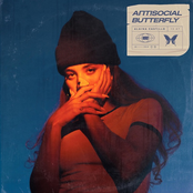 antisocial butterfly [Explicit]