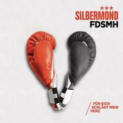 FDSMH (Für dich schlägt mein Herz)