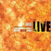 Best Wild Wild Live