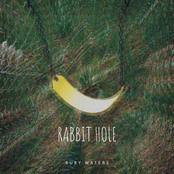 Rabbit Hole - Single