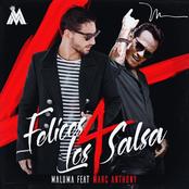 Felices los 4 (Salsa Version)