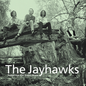 The Jayhawks: Tomorrow The Green Grass