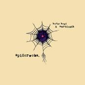 Horse Head: Spiderwebs.