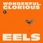 I Like The Way This Is Going - Live At KEXP Seattle/2011 by Eels