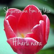 Hikaru nara - Shigatsu wa Kimi no Uso OP