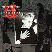 Fit to Be Tied: Great Hits by Joan Jett and the Blackhearts [Reissue]