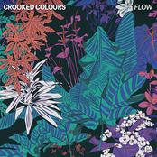 Crooked Colours: Flow