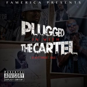 Plugged in with the Cartel