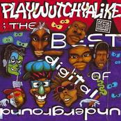 Digital Underground: The Best Of Digital Underground: Playwutchyalike
