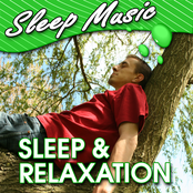 Sleep & Relaxation (Relaxing Music to Help You Sleep)