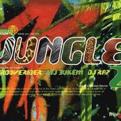 Fantazia Takes You Into The Jungle Mixed By LTJ Bukem