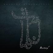AMYF - Premium Edition