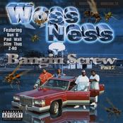 Bangin' Screw Pt. 2