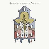 American Aquarium: Lamentations