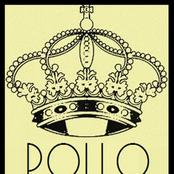 P.O.L.L.O
