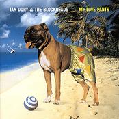 Mr Love Pants