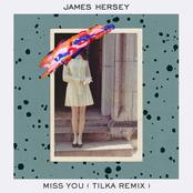 Miss You (Tilka Remix) - Single