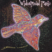 Widespread Panic: 'Til the Medicine Takes
