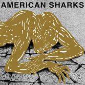 American Sharks: 11:11