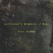 Hollywood's Bleeding / Numb